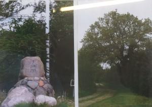 søg grave på struer kirkegaard