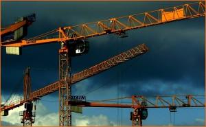 crane-255505_640