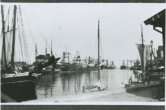 Havnen