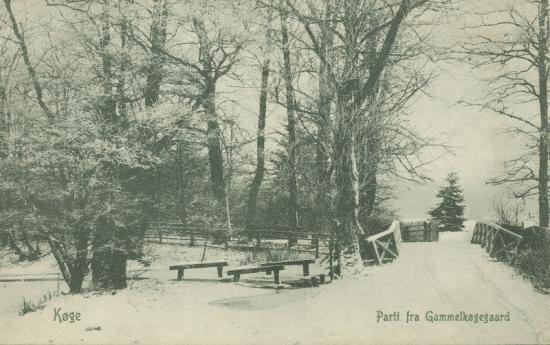 gl-koegegaard-sne-i-parken