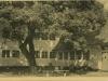 museumsgaarden-2