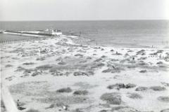 Søndre Havn og Badeanstalten